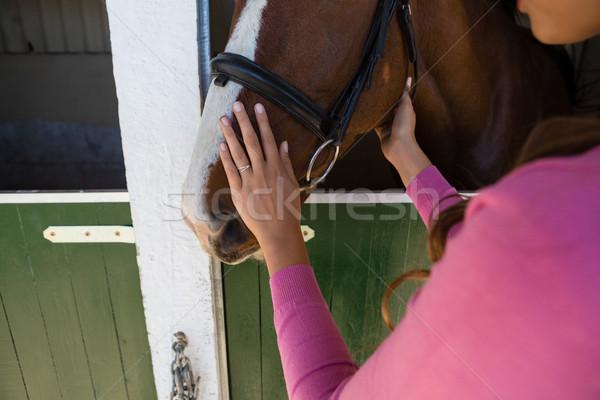 рук женщину прикасаться лошади стабильный Сток-фото © wavebreak_media