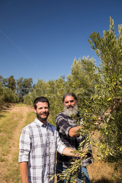 Portrait of happy friends examining olive on plant Stock photo © wavebreak_media