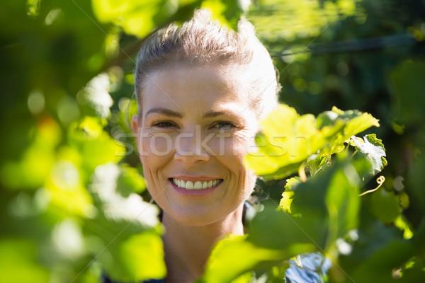 Női áll szőlőskert napos idő mező mosolyog Stock fotó © wavebreak_media