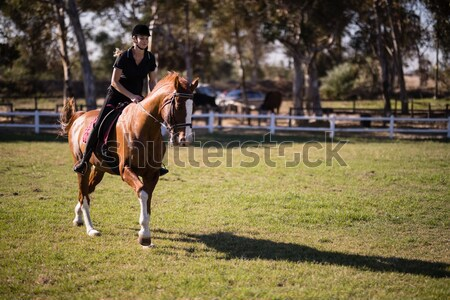 Side view of female jockey teaching horseback riding to girl Stock photo © wavebreak_media
