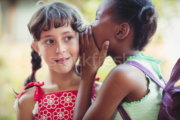 Girl telling a secret to her friend Stock photo © wavebreak_media