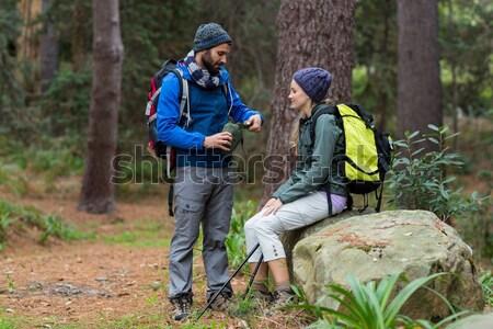 Kobiet turysta spaceru lasu plecak widok z tyłu Zdjęcia stock © wavebreak_media