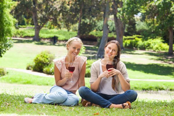 Feminino amigos copos de vinho parque beleza verão Foto stock © wavebreak_media