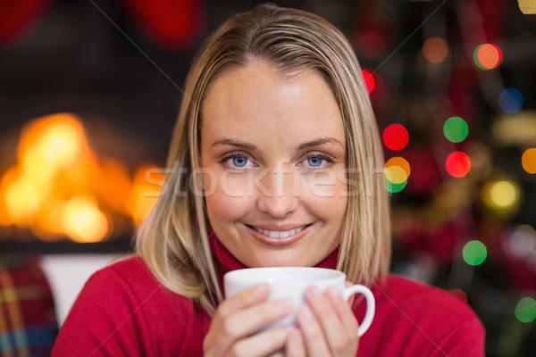 Güzel rahatlatıcı kanepe Noel ev Stok fotoğraf © wavebreak_media