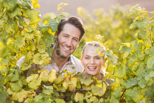 Two young happy vintners looking at camera from behind grape pla Stock photo © wavebreak_media