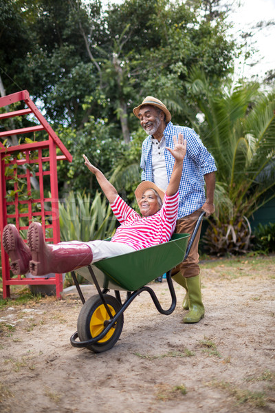 Cheerful senior man carrying woman in wheelbarrow Stock photo © wavebreak_media