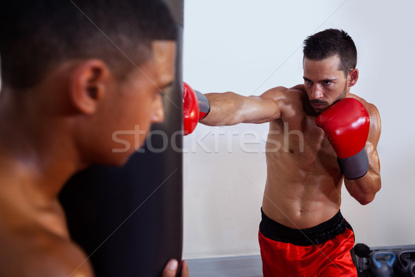 Trainer assisting man in boxing Stock photo © wavebreak_media
