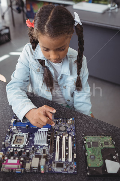 High angle view of elementary girl assembling circuit board Stock photo © wavebreak_media