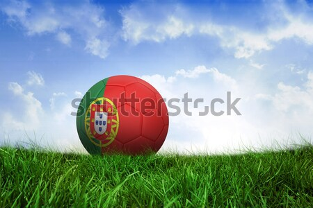Football in spain colours against full frame shot of grassy field Stock photo © wavebreak_media