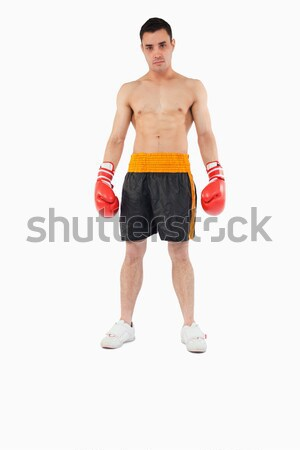 Boxeador cobrir branco esportes fundo Foto stock © wavebreak_media