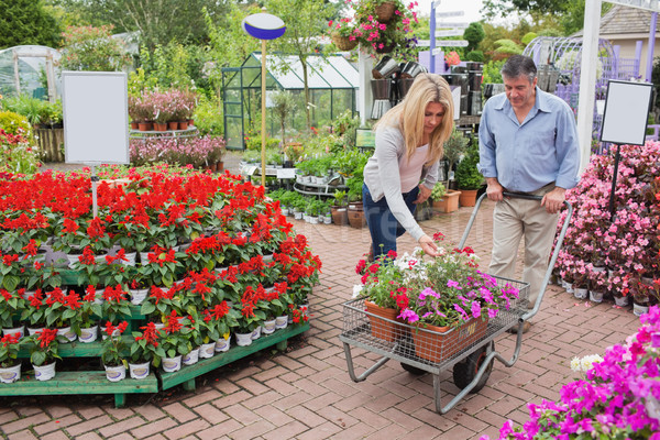 Customers pushing trolley and putting flowers in it Stock photo © wavebreak_media