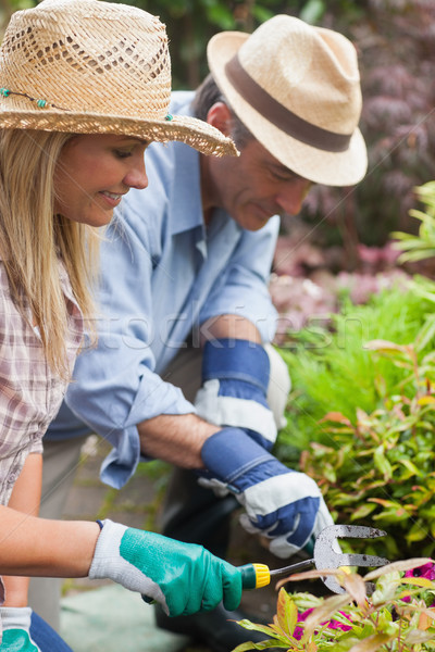 Stock photo: Happy couple gardening together wearing hats