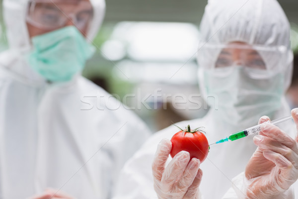 Studenten tomaat lab suits man Stockfoto © wavebreak_media