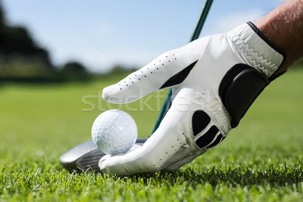 Jogador de golfe golfball campo de golfe esportes verde Foto stock © wavebreak_media
