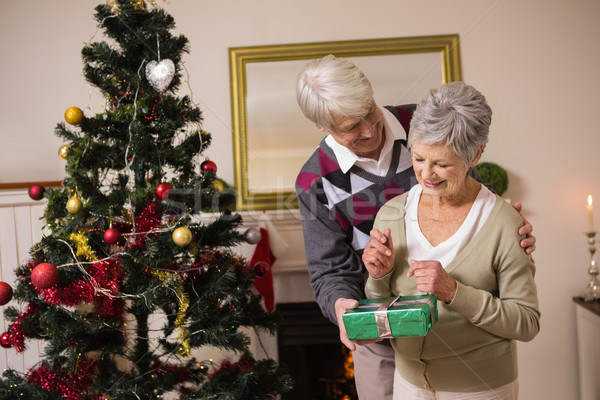 Senior couple swapping gifts by their christmas tree Stock photo © wavebreak_media