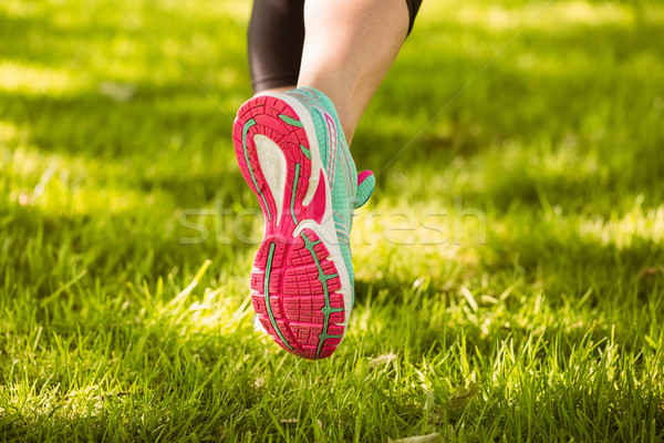 Donna scarpe da corsa esecuzione erba parco corpo Foto d'archivio © wavebreak_media