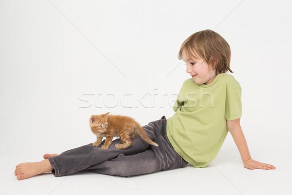мальчика котенка сидят белый любви Сток-фото © wavebreak_media