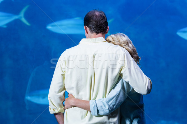 Rear view of couple watching the tank fish Stock photo © wavebreak_media