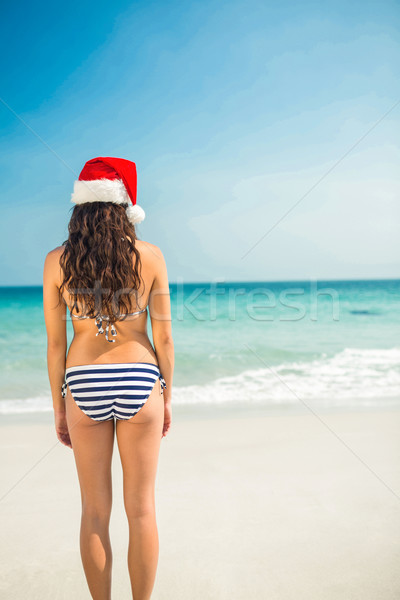 Rear view of pretty brunette in santa hat at the beach  Stock photo © wavebreak_media