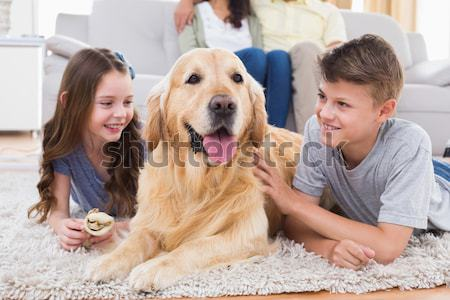 Sonriendo hermanas golden retriever casa salón Foto stock © wavebreak_media