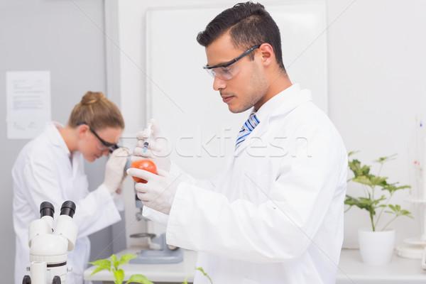 Scientist injecting a tomato  Stock photo © wavebreak_media
