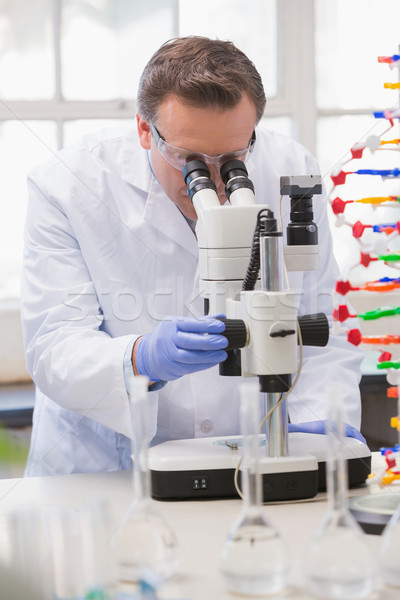 Scientist analysing petri dish with the microscope  Stock photo © wavebreak_media