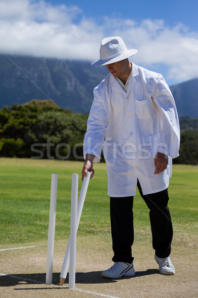 Umpire removing wicket on field at match Stock photo © wavebreak_media