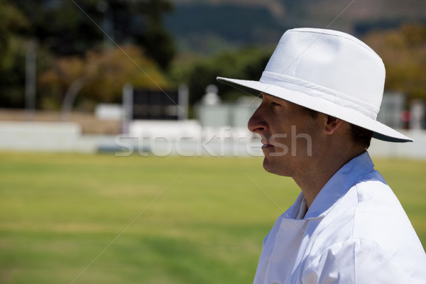 Profile view of umpire standing at field during cricket match Stock photo © wavebreak_media