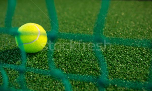 Közelkép teniszlabda net bíróság üzlet sport Stock fotó © wavebreak_media