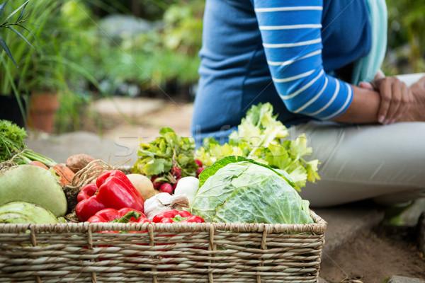 女性 新鮮な野菜 コミュニティ 庭園 新鮮な オーガニック ストックフォト © wavebreak_media