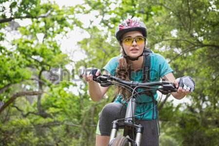 Feminino esportes luvas retrato Foto stock © wavebreak_media