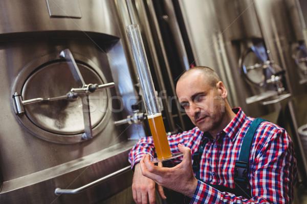 Manufacturer inspecting beer in glass tube Stock photo © wavebreak_media