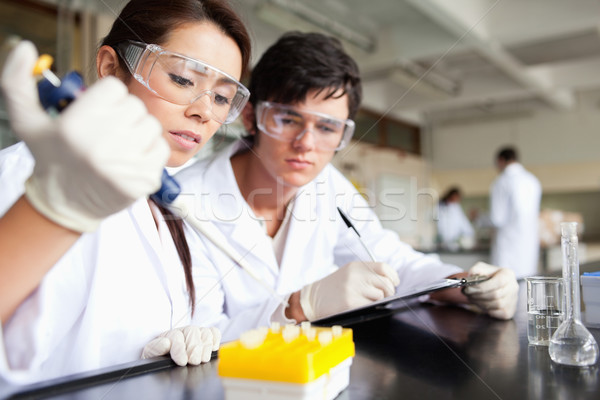 Focused scientists making an experiment in a laboratory Stock photo © wavebreak_media