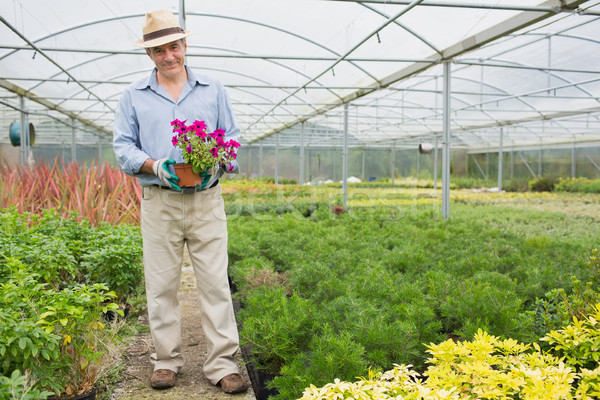 Smiling man holding a flower pot wearing a hat in greenhouse Stock photo © wavebreak_media
