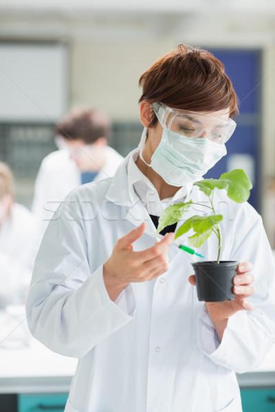 Concentrar mulher em pé laboratório verde Foto stock © wavebreak_media