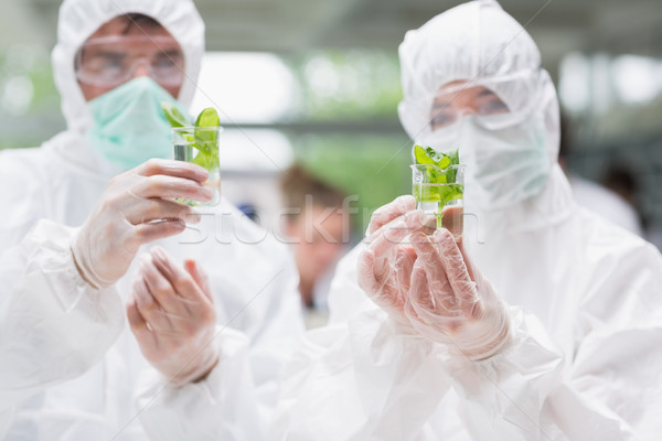 Estudiantes pie laboratorio plantas Foto stock © wavebreak_media
