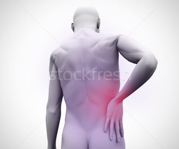 Digital homem dor nas costas corpo modelo de volta Foto stock © wavebreak_media