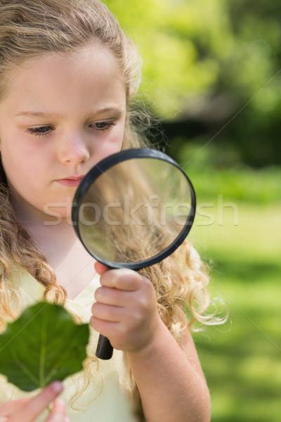 Meisje blad vergrootglas park jong meisje Stockfoto © wavebreak_media