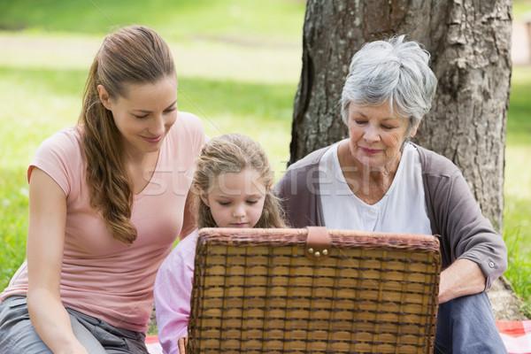 Großmutter Mutter Tochter Picknick-Korb Park Sitzung Stock foto © wavebreak_media