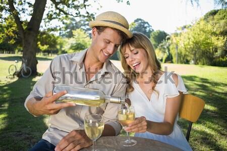 Cute пару питьевой белое вино пикника улыбаясь Сток-фото © wavebreak_media