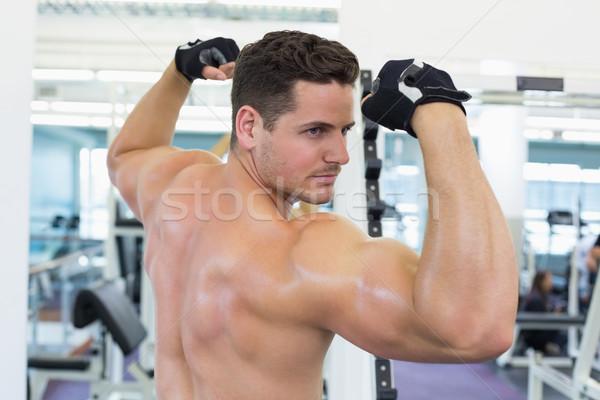 A torso nudo bodybuilder bicipiti palestra club formazione Foto d'archivio © wavebreak_media