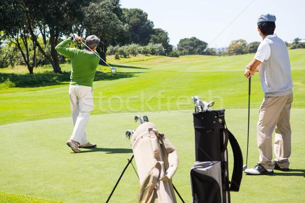 Golfer holding hole flag for friend putting ball Stock photo © wavebreak_media