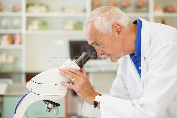 Senior scienziato guardando microscopio Università uomo Foto d'archivio © wavebreak_media