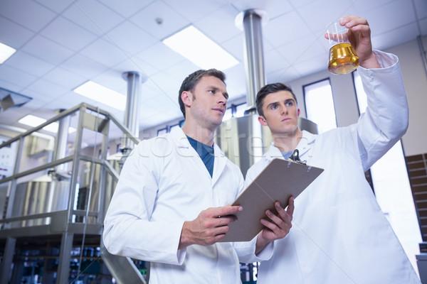 Két férfi laborköpeny néz főzőpohár sör gyár Stock fotó © wavebreak_media