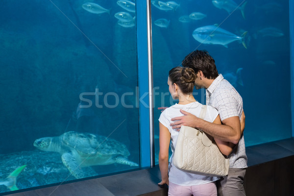 Happy couple looking at fish tank Stock photo © wavebreak_media