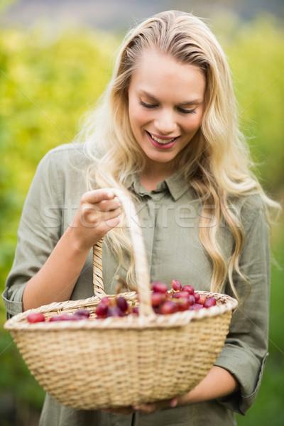 Blonde winegrower looking at her red grapes basket  Stock photo © wavebreak_media