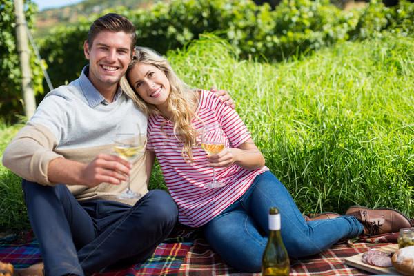 Happy couple holding wineglasses while relaxing on picnic blanket Stock photo © wavebreak_media