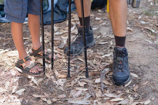 Niedrig Abteilung Vater-Sohn Wandern Wald stehen Stock foto © wavebreak_media