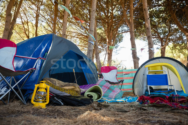 Camping parque retro liberdade Foto stock © wavebreak_media