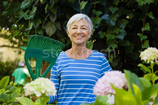 Portré mosolyog idős nő gereblye növények Stock fotó © wavebreak_media